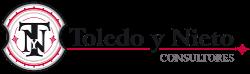 Toledo y Nieto Consultores